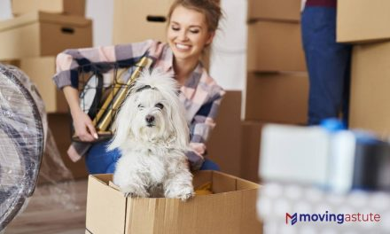 Moving with Pets – A Detailed Guide