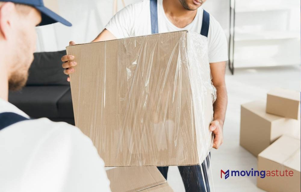 5 Best Companies for Plastic Moving Boxes