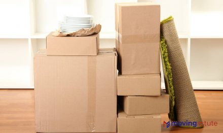 Best Dish Pack Boxes For Moving