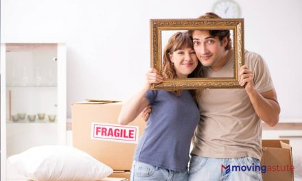 Best Picture And Art Moving Boxes
