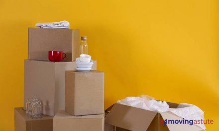 Best Glass Pack Moving Boxes